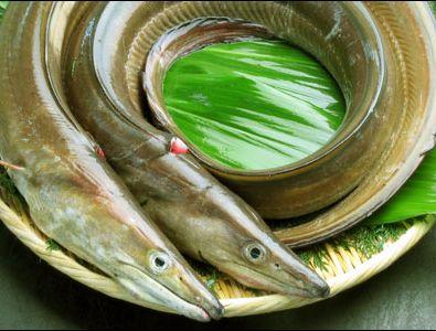 厳選!新宿ののどぐろ、あんこう鍋など魚料理の店 …